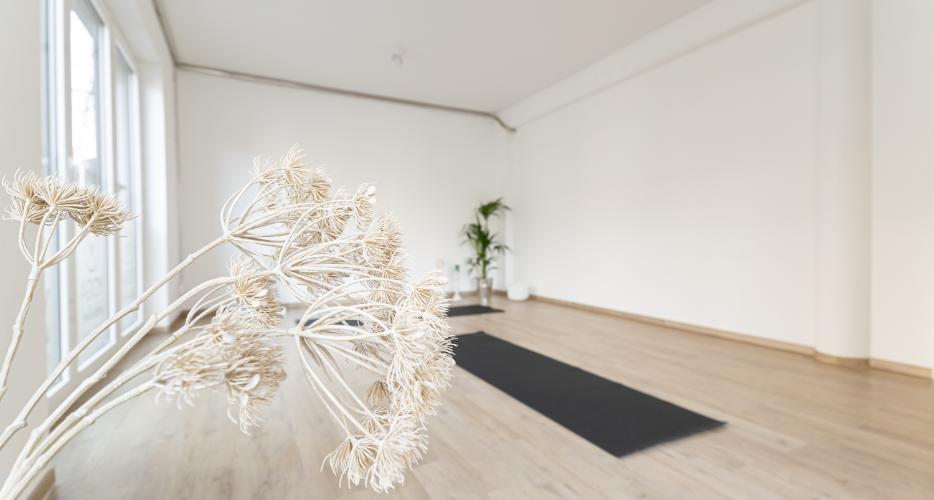Yoga Personal Training Aachen