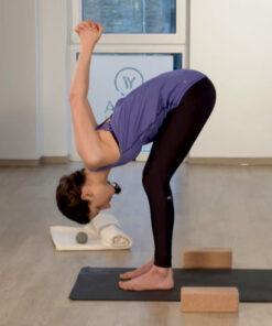 Vorbeuge im online Yoga Video