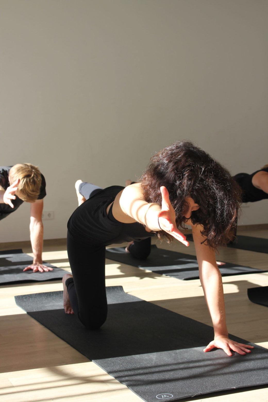 Vinyasa Yoga Klasse