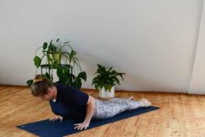 Yoga für Reiter: die Kobra