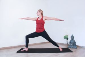 Gunas im Yoga
