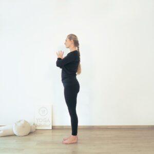Yoga Twist Flow Beginn Berghaltung