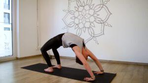 Ganzes Rad Yoga