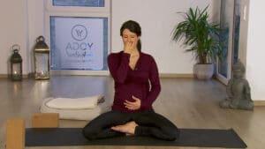 Yin & Yang Schwangerschaft